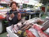 美味しそうな沖縄近海魚